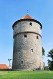 塔林,爱沙尼亚。中世纪塔基克在deKok 库存照片