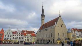 塔林,爱沙尼亚城镇厅正方形  影视素材