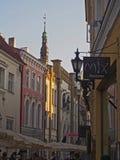 塔林,爱沙尼亚老镇  库存图片