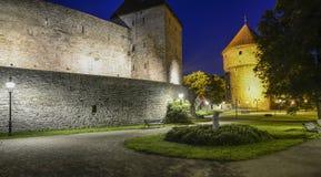 塔林,爱沙尼亚,欧洲,中世纪设防 免版税库存照片