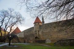 塔林,爱沙尼亚:济科在de科克Museum和在中世纪塔林防御市墙壁的本营隧道 科教文组织世界遗产站点 库存照片