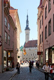 塔林,爱沙尼亚 免版税图库摄影