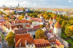 塔林 爱沙尼亚 老城市 免版税库存照片