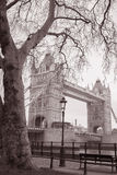 塔桥梁在伦敦,英国,英国 库存图片