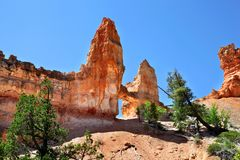 塔桥梁岩层在布莱斯峡谷国家公园 库存照片