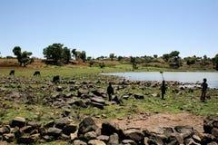 塔纳湖视图,埃塞俄比亚 免版税库存照片