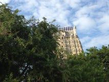 塔被捉住在树和天空之间 免版税图库摄影