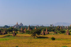 塔,在缅甸(Burmar)的Bagan 库存照片