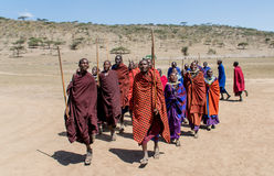 塞伦盖蒂国家公园,坦桑尼亚- Maasai村庄 免版税库存照片
