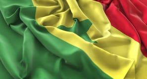 塞内加尔旗子被翻动的美妙地挥动的宏观特写镜头射击 免版税库存照片