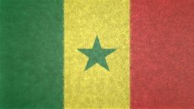塞内加尔3D的原始的旗子图象 皇族释放例证