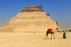 塞加拉步金字塔  库存照片