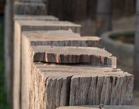塞子木头 库存照片
