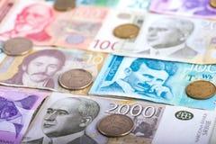 塞尔维亚丁那金钱 免版税库存照片