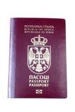 塞尔维亚人护照 库存图片