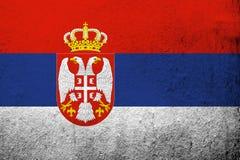塞尔维亚共和国国旗 难看的东西背景 库存例证