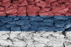 塞尔维亚旗子纹理  皇族释放例证