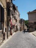 塞尔莫内塔中世纪村庄在意大利 库存图片