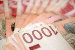 塞尔维亚丁那金钱, 1,000丁那钞票  免版税库存图片