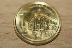 塞尔维亚人丁那-硬币金钱 库存照片