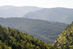 塞尔维亚山的三种颜色 免版税图库摄影