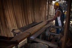 塞拉利昂,西非, Yongoro村庄  库存图片