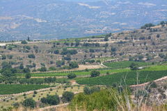 塞浦路斯地中海风景 免版税库存照片
