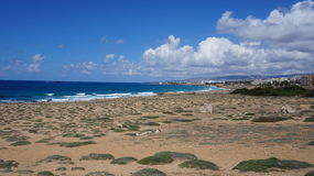 塞浦路斯的沿海 免版税图库摄影