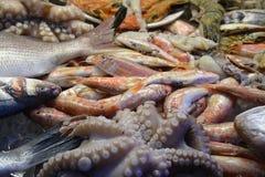 塞浦路斯的海食品批发市场 图库摄影