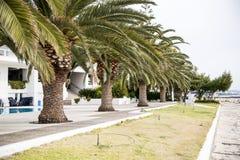 塞浦路斯自然 免版税库存照片
