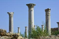 塞浦路斯,古老蒜味咸腊肠 图库摄影