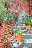 塞浦路斯:一个传统房子的入口在Tres Elies村庄在Troodos山的 库存照片