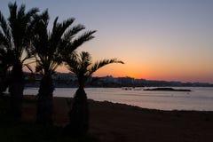 塞浦路斯 普罗塔拉斯 棕榈树和海看法日落的 免版税图库摄影
