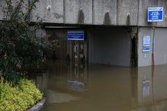 塞纳河洪水在2016年6月02日的巴黎 免版税库存图片