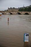 塞纳河洪水在2016年6月02日的巴黎 免版税图库摄影