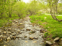 巴塞罗那美丽的叫的干净的新鲜的gualba少许安排河晃动西班牙被采取的瀑布 新鲜和干净的小的河,一个松弛地方 库存照片