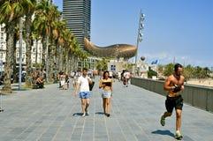 巴塞罗那,西班牙沿海岸区  库存图片