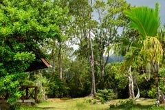 塞舌尔山国家公园- seychellen 库存图片