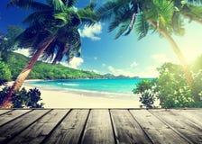 塞舌尔群岛海滩 免版税库存图片