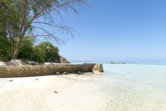 塞舌尔群岛的秀丽 库存照片