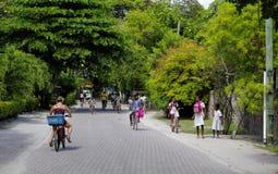 塞舌尔群岛,拉迪格岛海岛- 8月07日:梦想海岛休闲的 在系泊的自行车 拉迪格岛海岛, Seyche 库存图片
