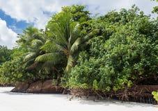 塞舌尔群岛 美丽的Anse Volbert海滩 免版税库存图片