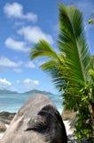 塞舌尔群岛anse来源d `银棕榈和岩石 免版税库存照片