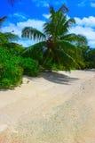 塞舌尔群岛Beachscape 库存图片