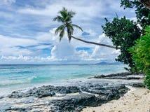 塞舌尔锡卢埃特岛海滩 免版税图库摄影
