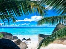 塞舌尔锡卢埃特岛海滩 免版税库存图片
