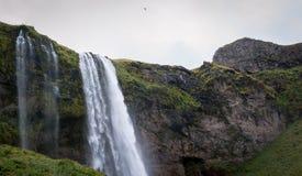塞里雅兰瀑布瀑布风景南的冰岛 免版税图库摄影