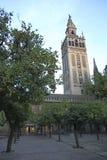 塞维利亚大教堂 库存图片