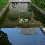 塞维利亚,西班牙- 6月19 :的百合池塘在皇家的城堡 图库摄影