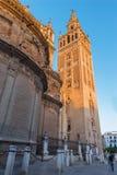 塞维利亚-与Giralda钟楼的大教堂de圣玛丽亚de la塞德在早晨黄昏 免版税库存照片